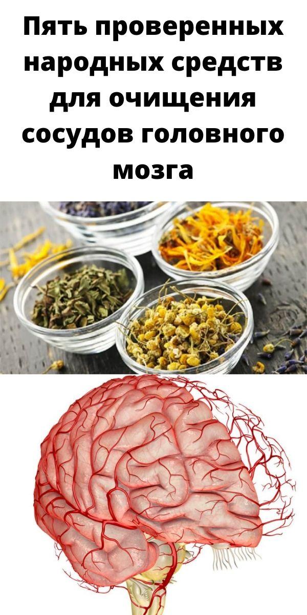 Пять проверенных народных средств для очищения сосудов головного мозга