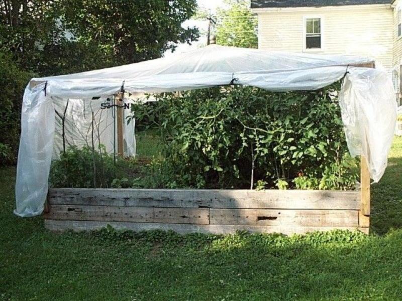 Тридцать превосходных идей, как огородить грядки на садовом участке
