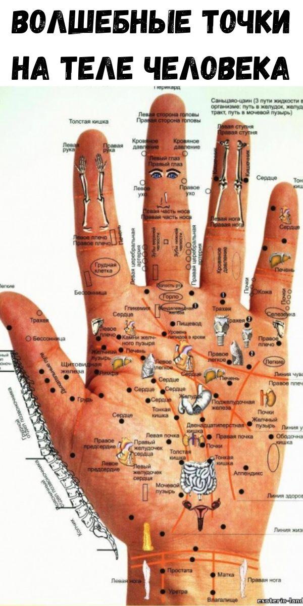 Сонные точки на теле человека фото