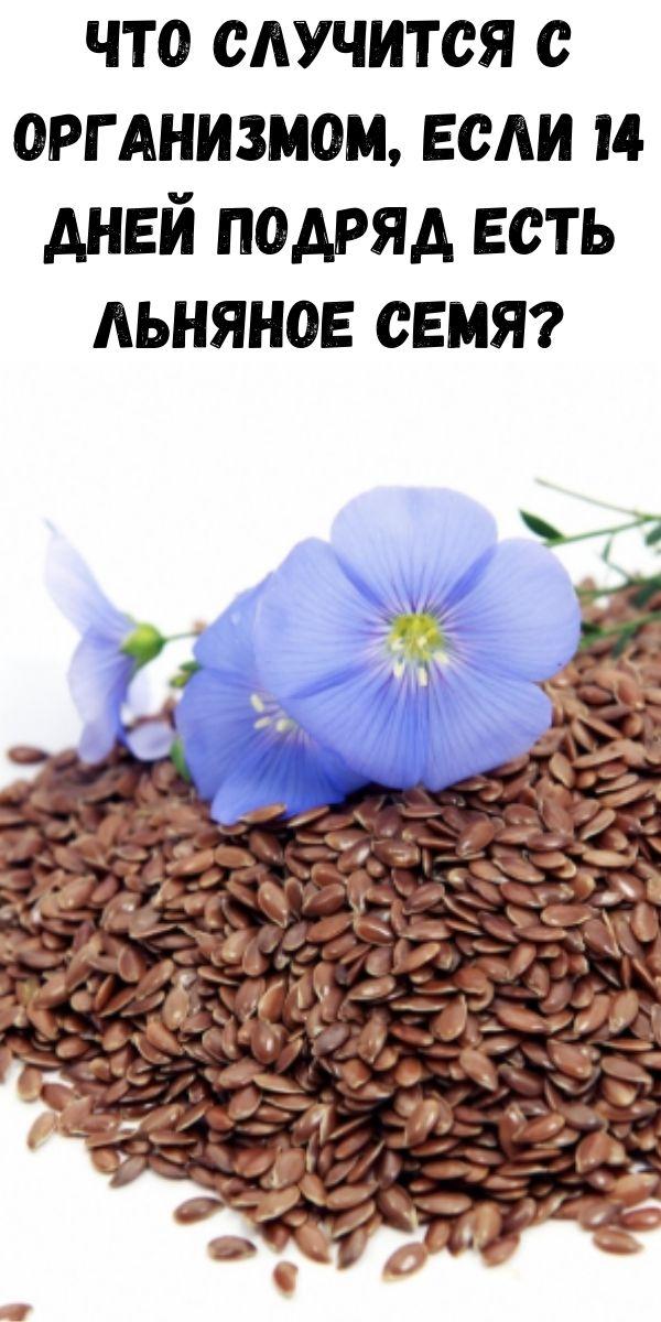 Что случится с организмом, если 14 дней подряд есть льняное семя?