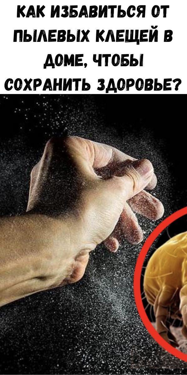 Как избавиться от пылевых клещей в доме, чтобы сохранить здоровье?