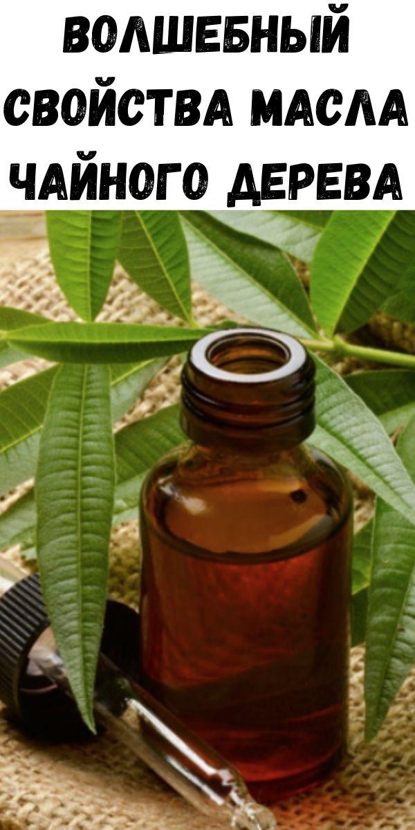 Волшебный свойства масла чайного дерева