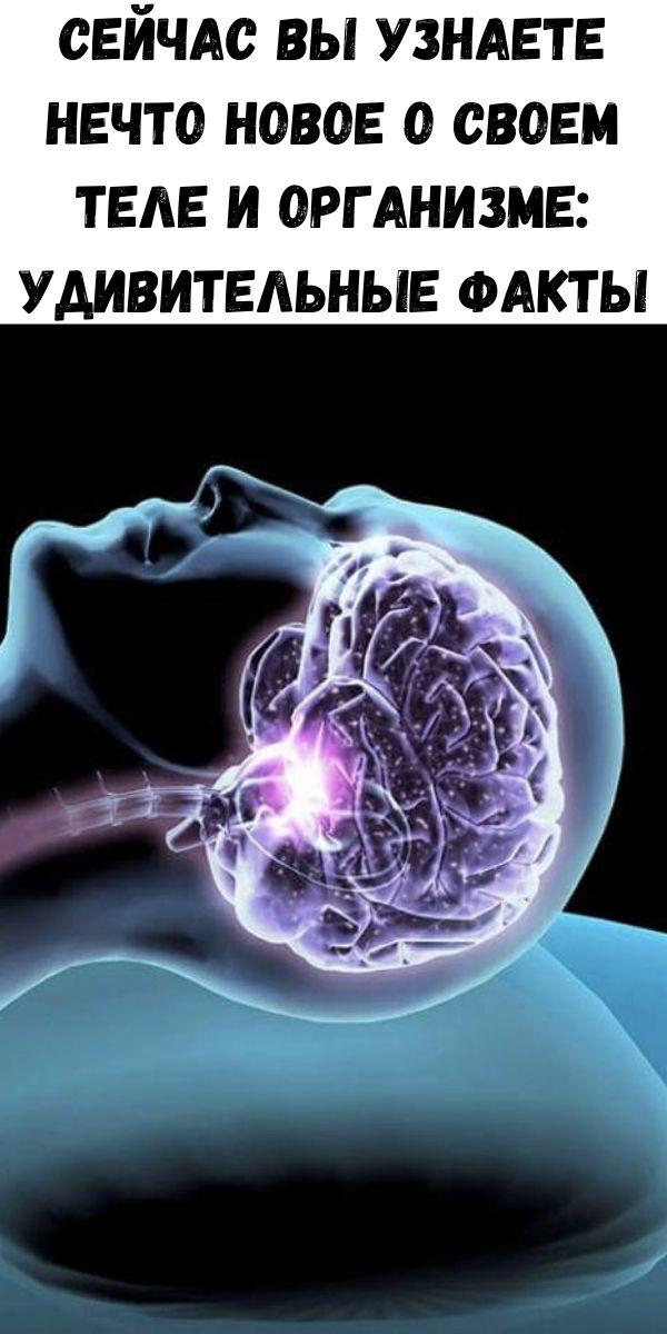 Сейчас вы узнаете нечто новое о своем теле и организме: Удивительные факты
