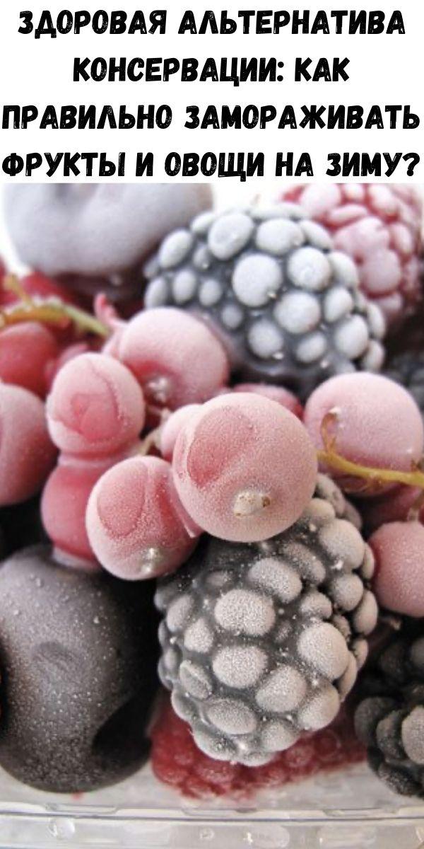 Здоровая альтернатива консервации: как правильно замораживать фрукты и овощи на зиму?
