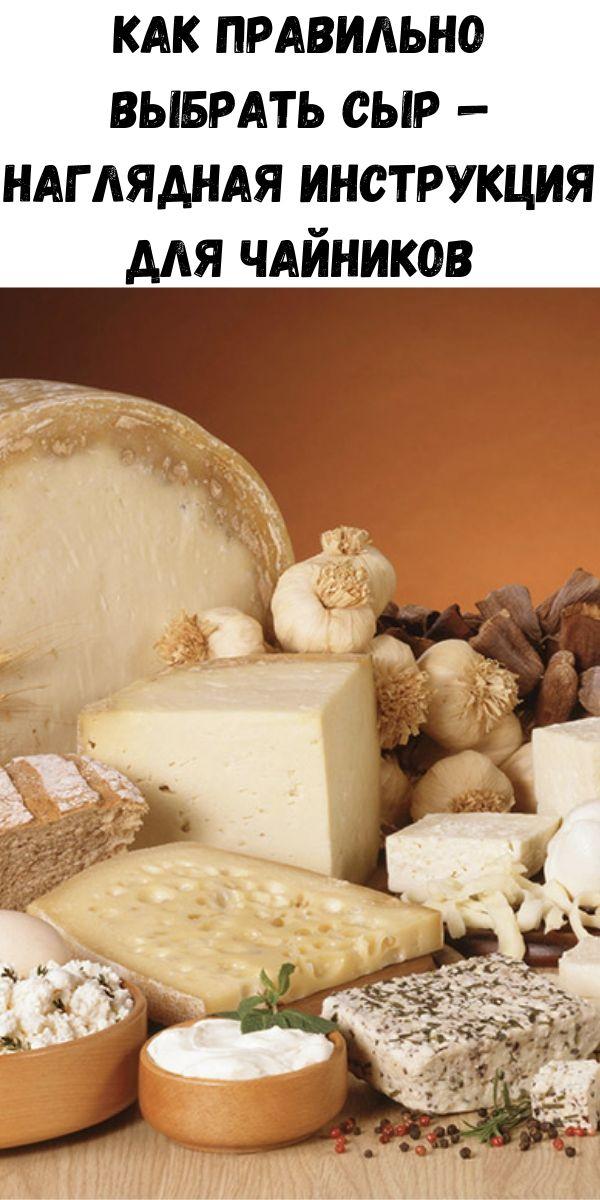Как правильно выбрать сыр — наглядная инструкция для чайников