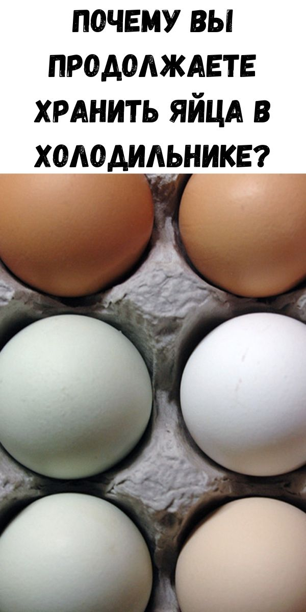 Почему вы продолжаете хранить яйца в холодильнике?
