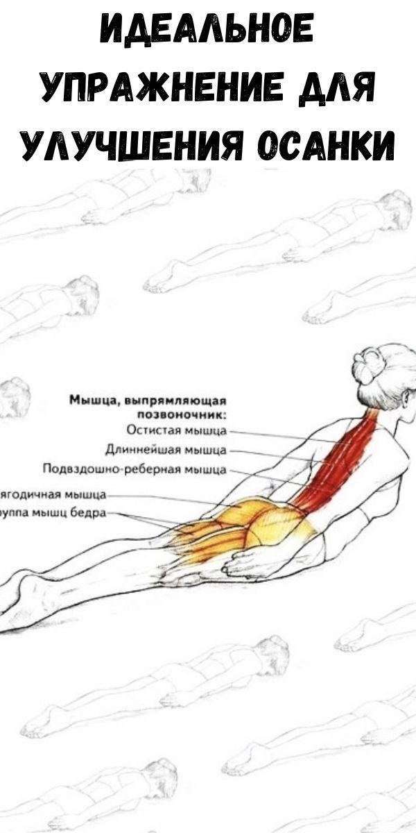 Идеальное упражнение для улучшения осанки