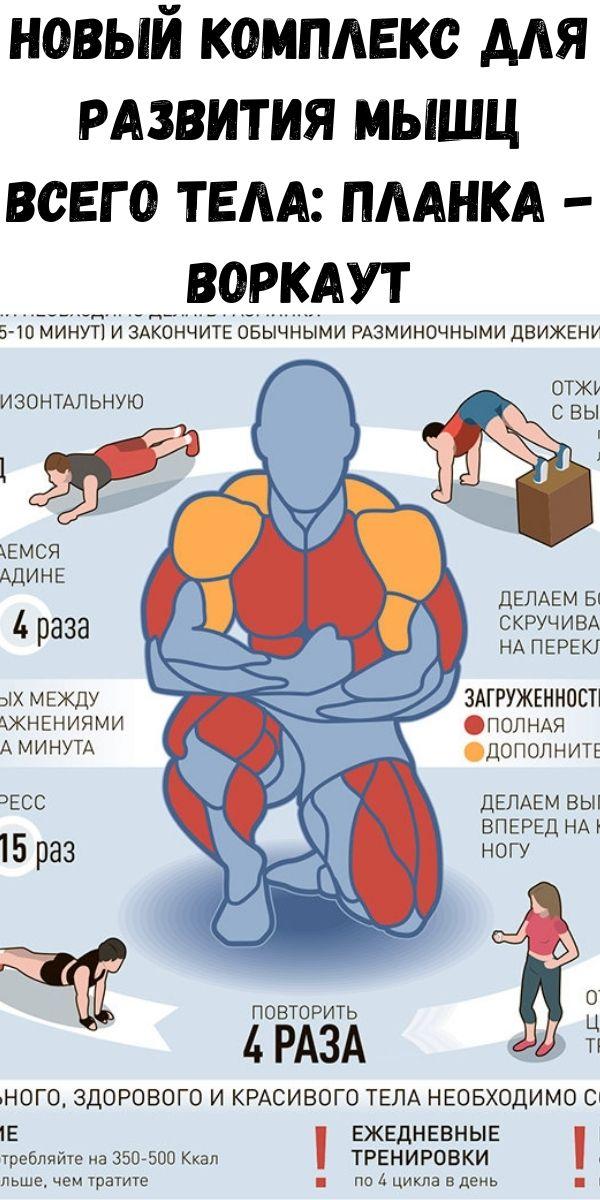 Новый комплекс для развития мышц всего тела: планка - воркаут