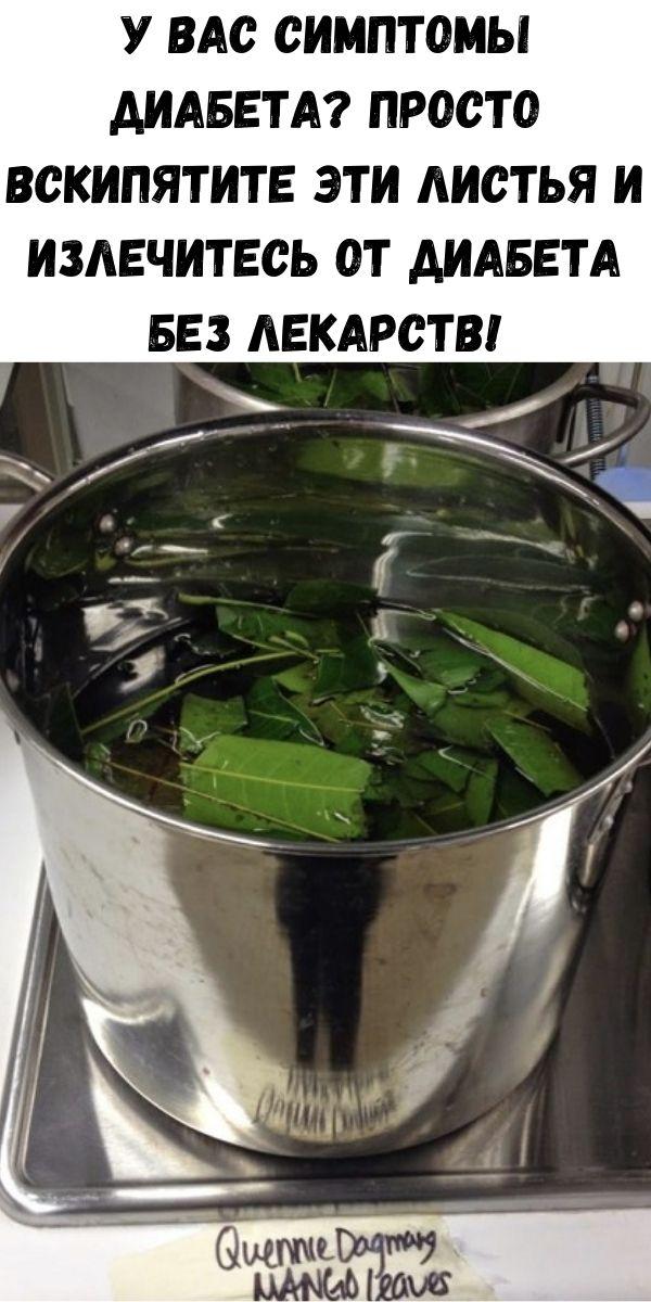 У вас симптомы диабета? Просто вскипятите эти листья и излечитесь от диабета без лекарств!