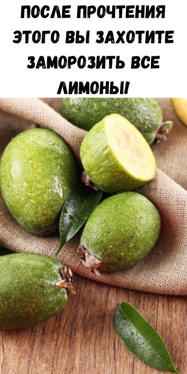 После прочтения этого вы захотите заморозить все лимоны!