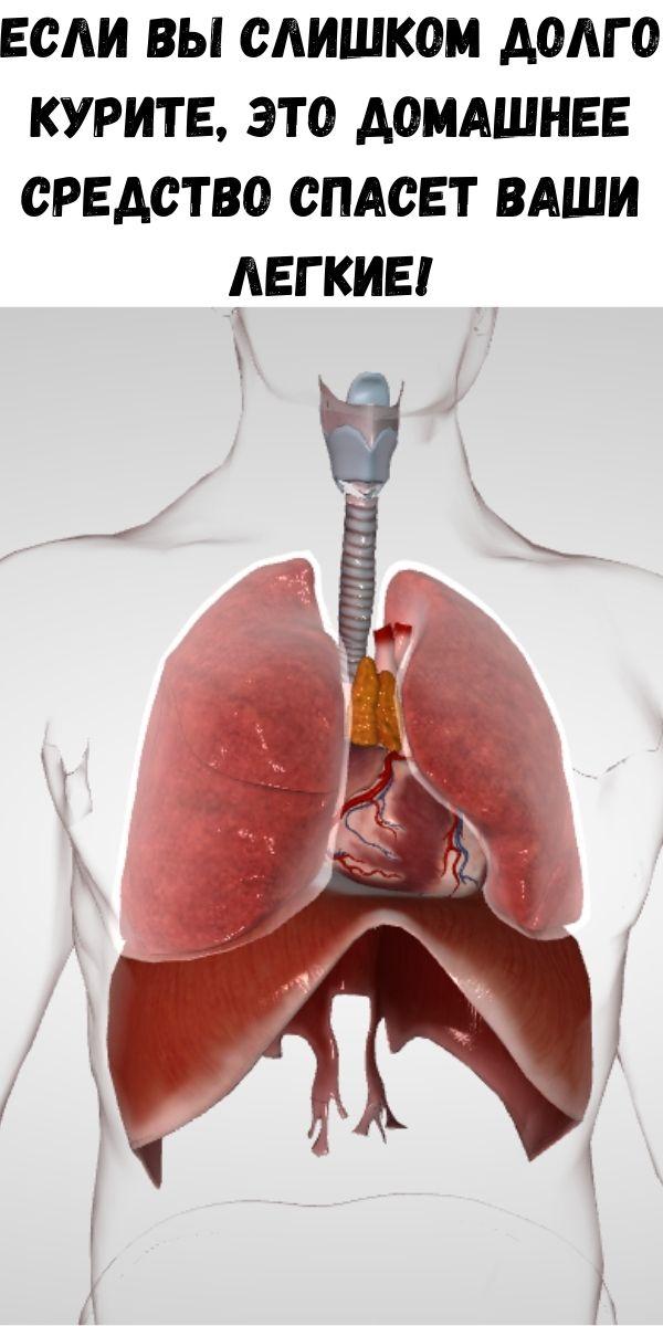 Если вы слишком долго курите, это домашнее средство спасет ваши легкие!