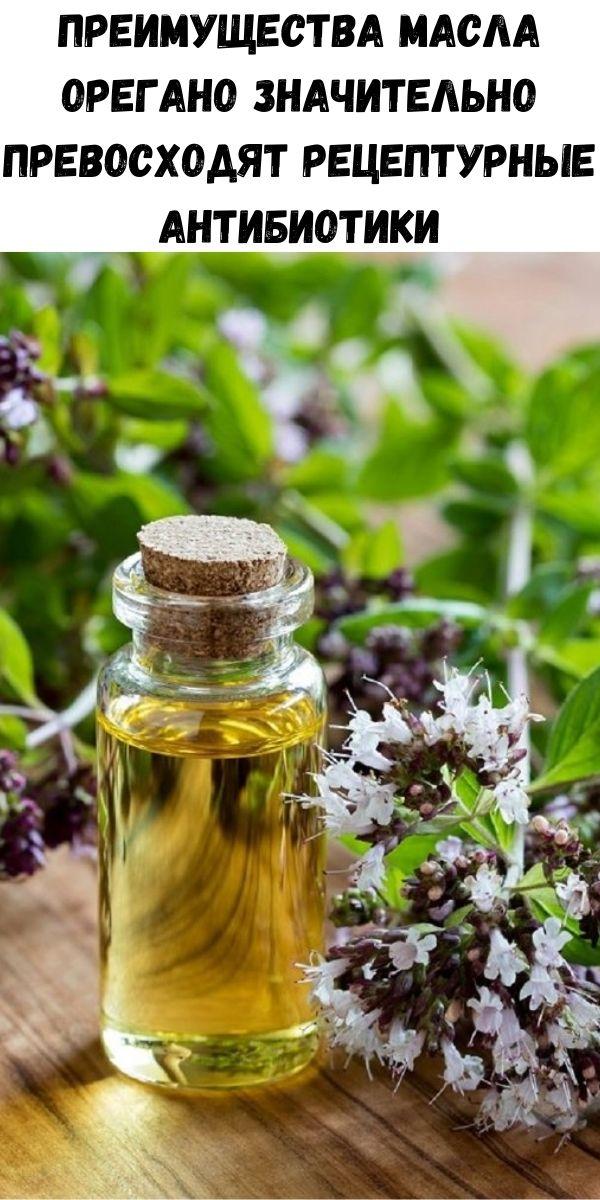Преимущества масла орегано значительно превосходят рецептурные антибиотики