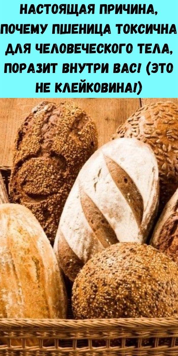 Настоящая причина, почему пшеница токсична для человеческого тела, поразит внутри вас! (Это не клейковина!)