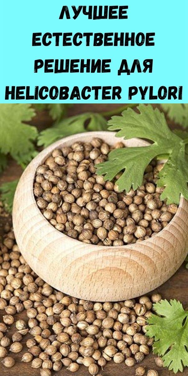 Лучшее естественное решение для Helicobacter Pylori