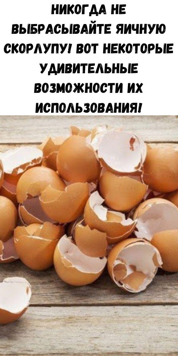 Никогда не выбрасывайте яичную скорлупу! Вот некоторые удивительные возможности их использования!