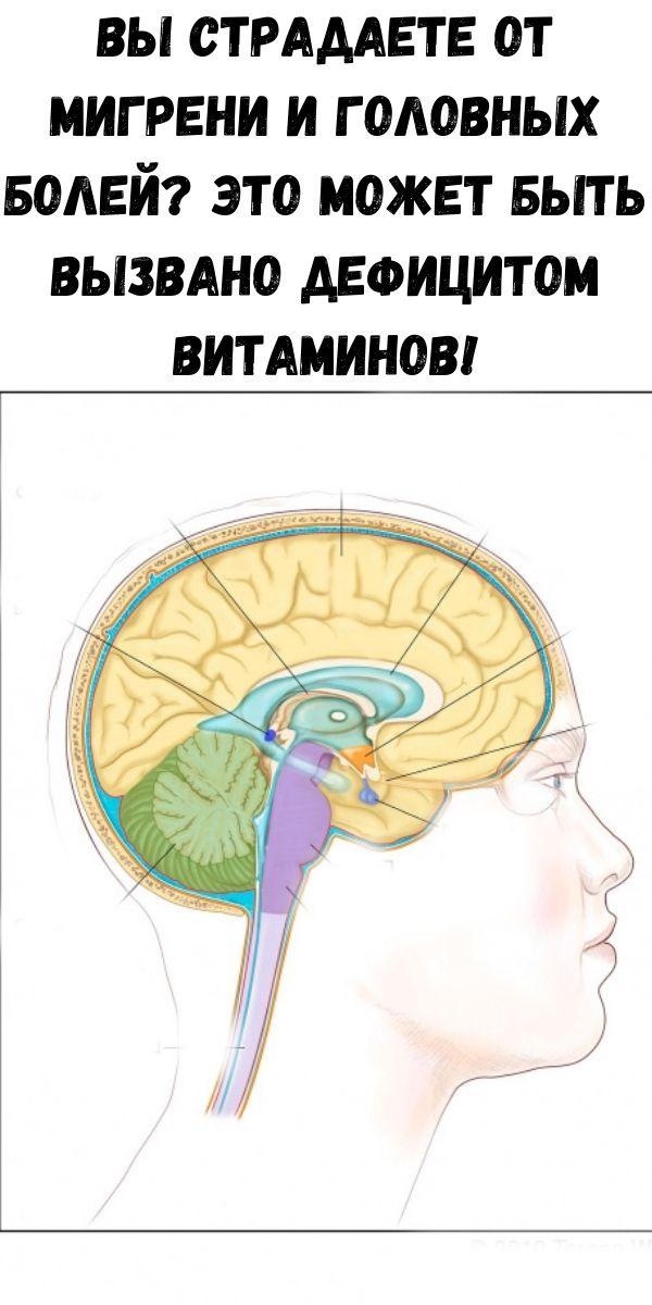 Вы страдаете от мигрени и головных болей? Это может быть вызвано дефицитом витаминов!