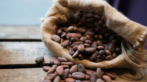 5 нераскрытых выгод от масла какао