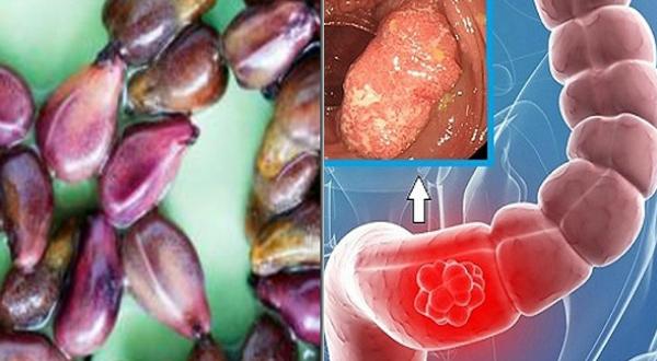Это семена, которые делают выручку фармацевтической отрасли, потому что они устраняют даже самую смертельную болезнь