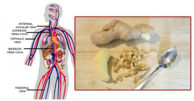 Вещи, которые случаются с вашим телом, когда вы начинаете есть имбирь каждый день