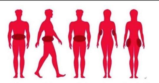 4 типа жира в области живота и как избавиться от каждого из них