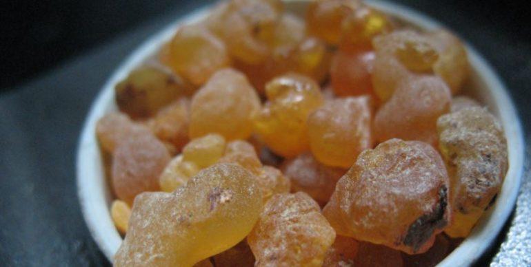 Мощное эфирное масло, которое может остановить распространение рака ...