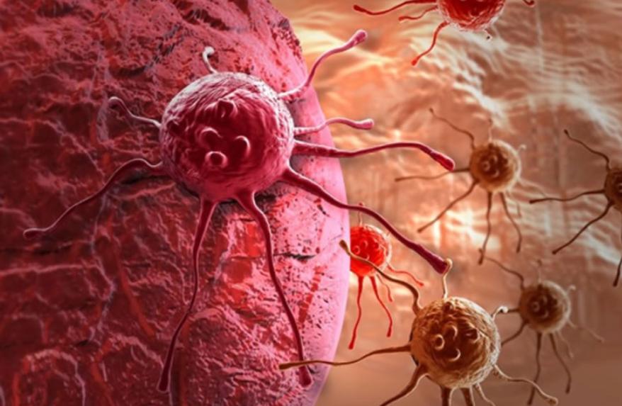 Как можно предотвратить появление рака: 15 советов от профессионалов
