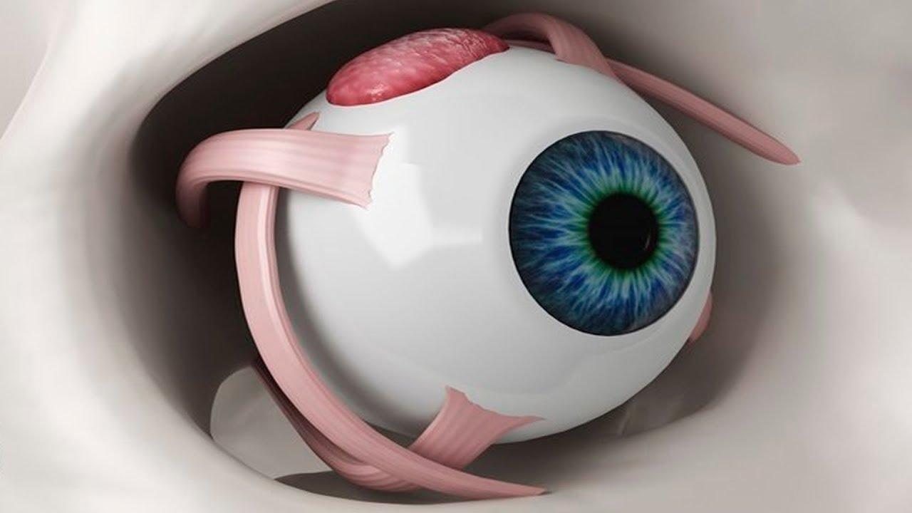 Как вернуть зрение без операции? Бабушкин рецепт: