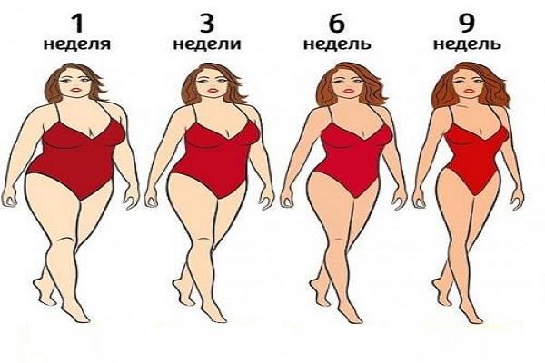 План безуглеводной диеты. Прогнозируемая потеря веса - 15 кг через 9 недель