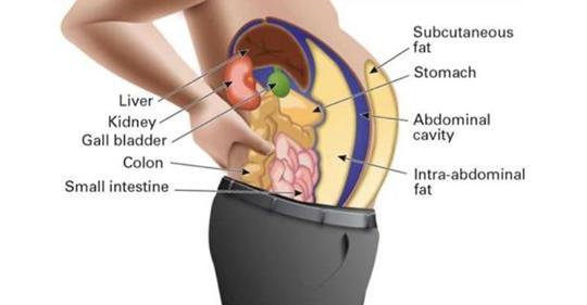 Токсины в жировых клетках становятся причиной вздутия и боли! Вот, как вы можете очистить их!