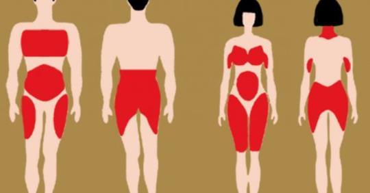 Почему наши тела перераспределяют жир по мере старения, и как это предотвратить