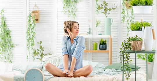 5 растений, которые помогут улучшить ваш сон