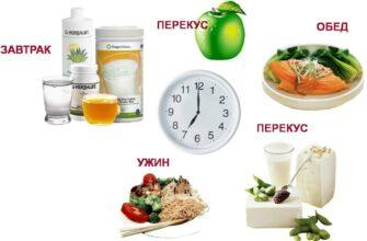 Правильный режим питания почасово
