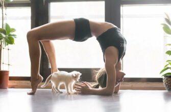7-минутная йога - отличный способ начать день