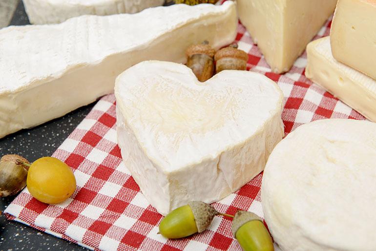7 невероято полезных сыров: добавьте их в свой рацион!