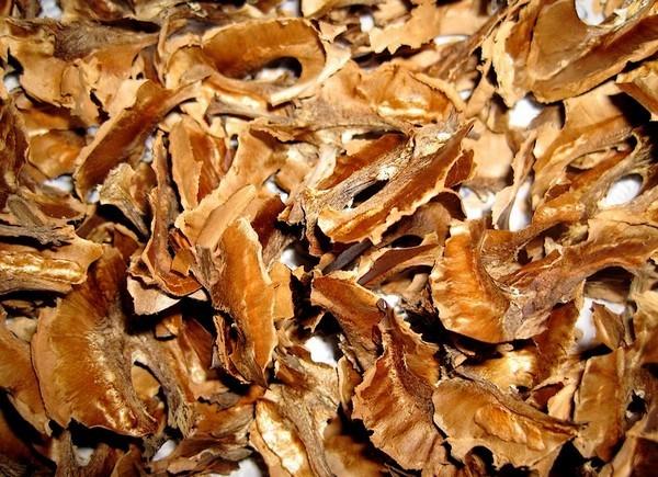 Всю жизнь я выбрасывала перегородки из грецких орехов. А зря!